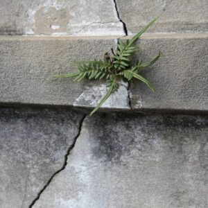 El origen de las grietas en edificación